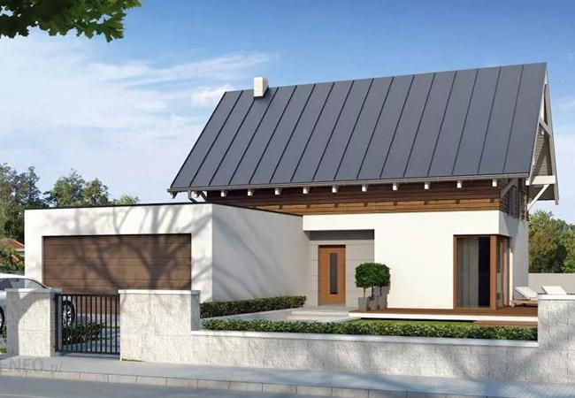 projekt domu neo